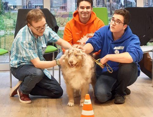 Einblicke in die Freiwilligendienst-Seminare beim Paritätischen – Heute: DogTher (Tiergestützte Intervention)
